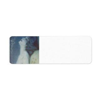 Raphael Kirchner: Front cover illustration Return Address Label