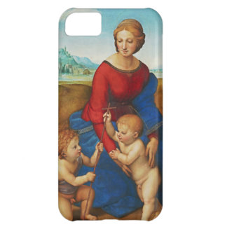Raphael: Madonna in the Meadow iPhone 5C Cover
