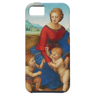 Raphael: Madonna in the Meadow iPhone SE/5/5s Case