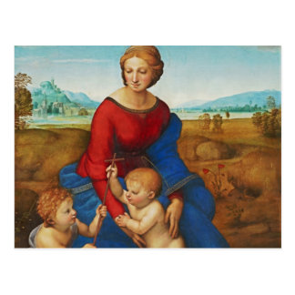 Raphael: Madonna in the Meadow Postcard