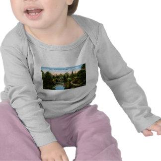 Rapid River Escanaba, Michigan T Shirt