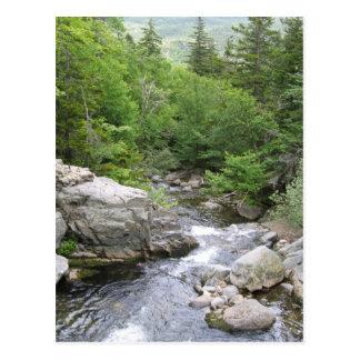 Rapid River, Mount Washington, NH Postcard