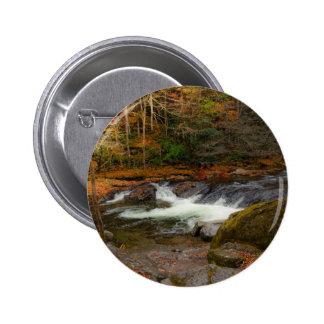 Rapids Button