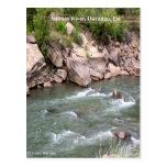 Rapids del río de los Animas Postal