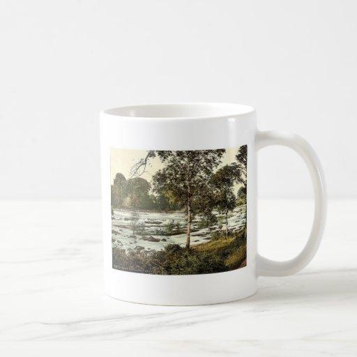 Rapids en el Shannon. Co. Quintilla, Irlanda rara Tazas
