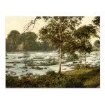 Rapids en el Shannon, quintilla del condado Postal