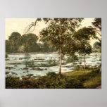 Rapids en el Shannon, quintilla del condado Póster