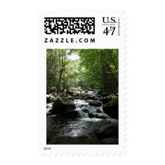 Rapids Postage