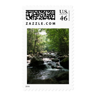 Rapids Postage Stamps