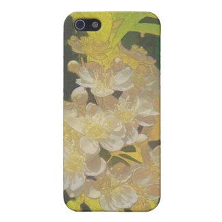 Rapsodia floral en oro y blanco iPhone 5 funda