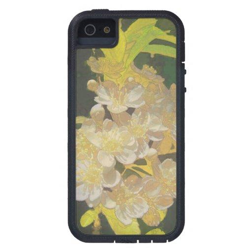 Rapsodia floral en oro y blanco iPhone 5 fundas