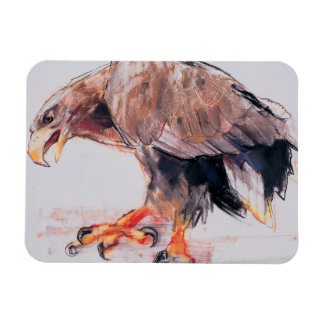 Raptor 2001 rectangular photo magnet