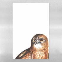 Raptor Hawk Bird Wildlife Dry Erase Magnetic Sheet
