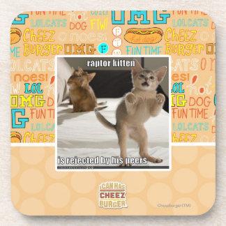 Raptor Kitten Coaster