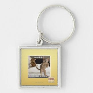Raptor Kitten Keychain