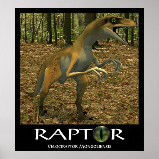 Raptor Print