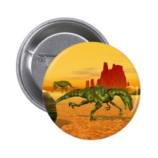 Raptors Pinback Button