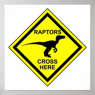 Raptors - Poster