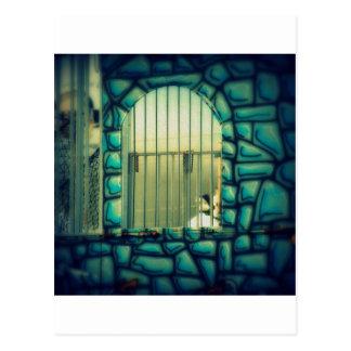 Rapunzel's Cage Post Card