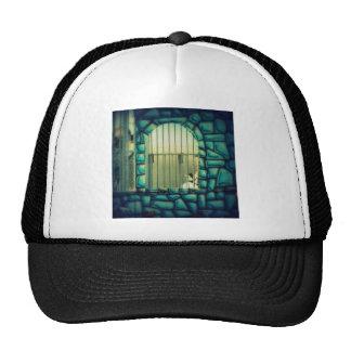 Rapunzel's Cage Trucker Hat
