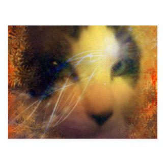 raqueta por completo del gatito del calor tarjetas postales