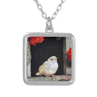 RARE albino robin bird Necklaces