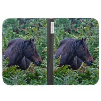 Rare Black New Forest Pony - Wild Horse - England Kindle Covers