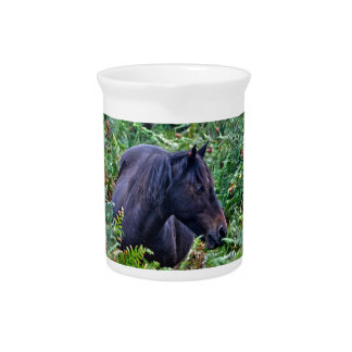 Rare Black New Forest Pony - Wild Horse - England Drink Pitcher