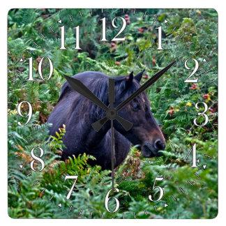 Rare Black New Forest Pony - Wild Horse - England Square Wall Clock