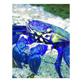 Rare Blue Crab Flyer
