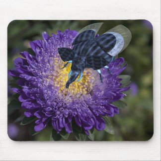 Rare Blue Elephant Bug Mouse Pad