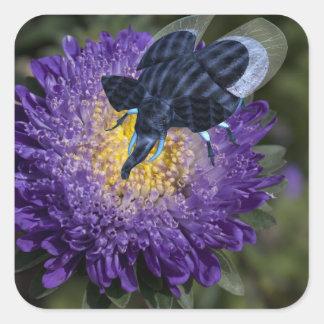 Rare Blue Elephant Bug Square Sticker