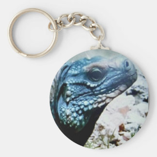 Rare blue iguana, keychain