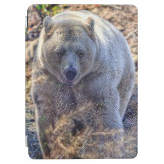 Rare Kermode Bear (Spirit Bear) Photo iPad Air Cover