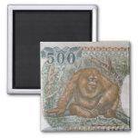 Rare Orangutan Money Refrigerator Magnets