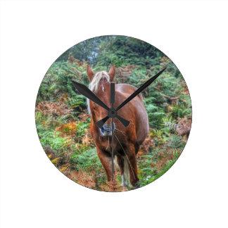 Rare Palomino New Forest Pony & Bracken - England Round Clock