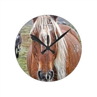 Rare Palomino New Forest Pony Wild Horse - England Round Clock