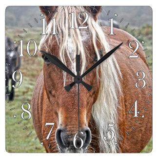 Rare Palomino New Forest Pony Wild Horse - England Square Wall Clock