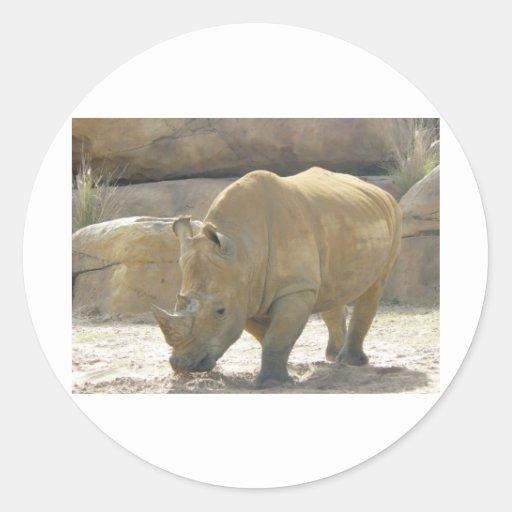 Rare Rhino Round Sticker