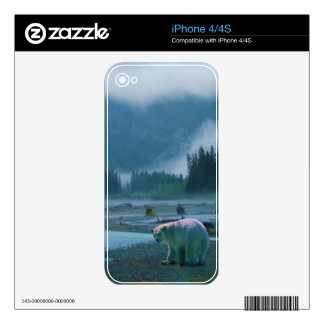 Rare Spirit Bear and Misty River Wildlife Scene iPhone 4 Skins