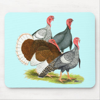 Rare Turkey Quartet Mouse Pads