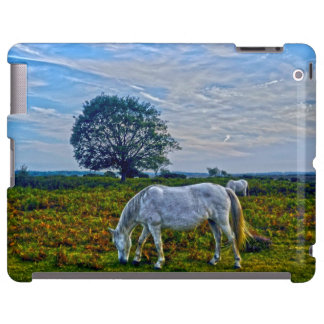 Rare White New Forest Ponies, Wild Horse - England
