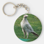 Rare White Raven Gifts Basic Round Button Keychain