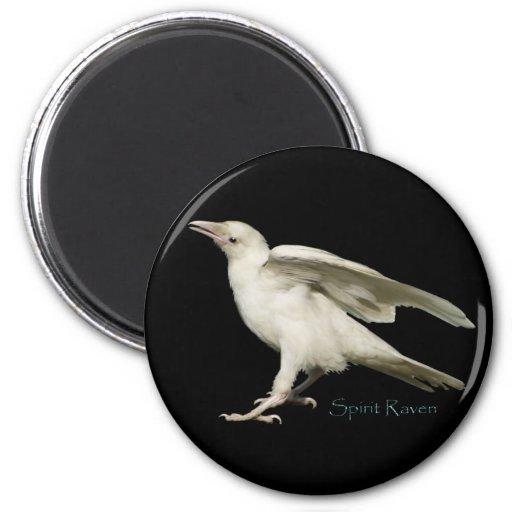 Rare White Raven Photo Spirit Raven II Series Magnets