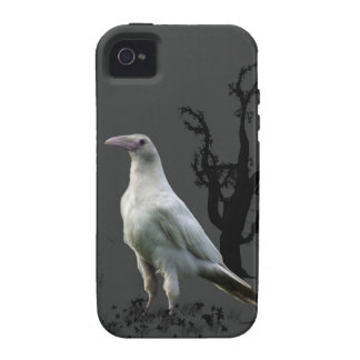 Rare White Raven, Wild Bird, Fantasy, Goth iPhone 4/4S Covers