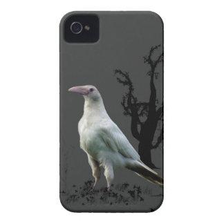 Rare White Raven, Wild Bird, Fantasy, Goth iPhone 4 Case