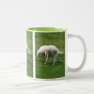 Rare White Raven Wildlife Photo Two-Tone Coffee Mug