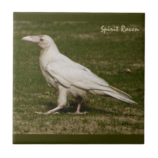 Rare White Raven Wildlife Photography Ceramic Tile