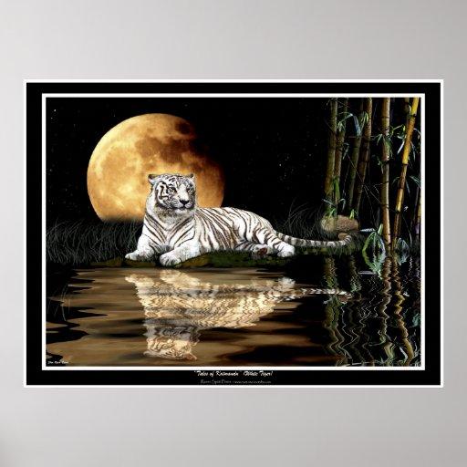 RARE WHITE TIGER & MOON Art Prints & Posters