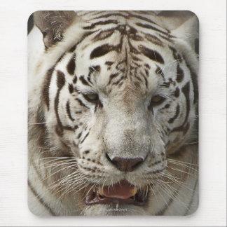 Rare White Tiger Wild Animal Big Cat Mousepad